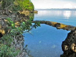 Our natural saltwater static pool from another angle.