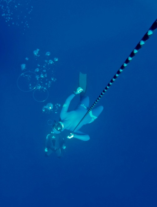 Bubble ring blowing training to end an epic freediving session just makes it even more epic.