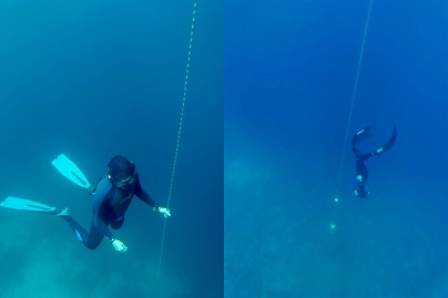 Natural born freedivers. It's the only way I can describe these two.