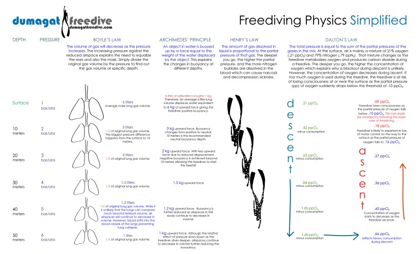 FreedivingPhysicsSimplifiedVer3