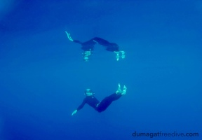 Mirror, mirror... who's the silliest freediver of them all?