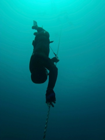 Sylvain of Omniblue Freedive descends into Romblon's deep blue.