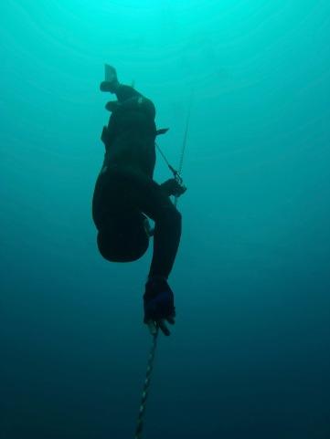 Sylvain of Omniblue Freedive descends into Romblon's deep blue.