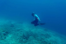 "12-yr old kid, Giuliano, encounters a turtle in the wild for the first time while discovering freediving. ""If children lose contact with nature, they won't fight for it."" ~George Monbiot."