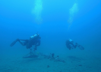 Deep muck diving with the pros. Some say no thanks to tanks. I always say yes please and ask when. Scuba divers may not go as deep & be as sexy as freedivers, but I think they are pretty darn awesome too.