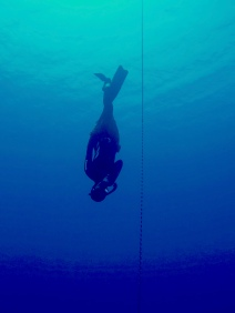 Suna showing us how to do a beautiful dive to 25 meters. Looking good aside, did you know that with proper technique comes depth and distance? Getting certified remains, without question, the safest, fastest and coolest way to achieve that goal.